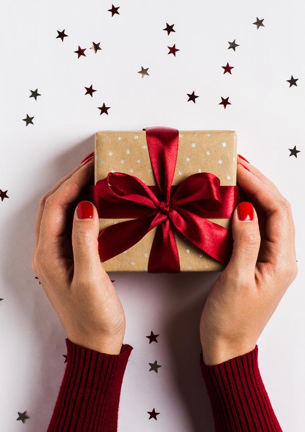 Printable Christmas Planner (to Help You Plan Easily)